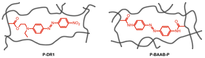 Azobenzenes in Polymers