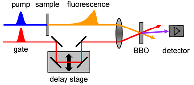 fs Fluorescence Up-Conversion