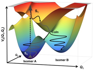 Ground- and Excited-State Potential Energy Hypersurfaces with Conical Intersection